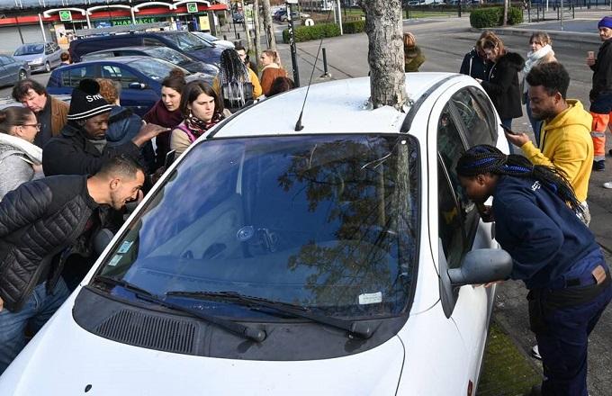 France : Un arbre au milieu d'une voiture fait sensation à Nantes